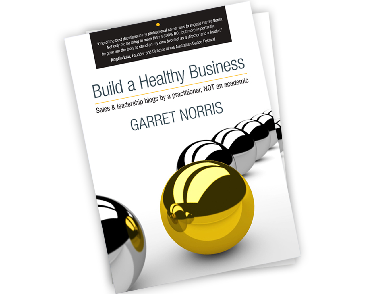 added busiess growth book download